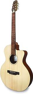 APC 乐器 EA100 CROS CW 电吉他