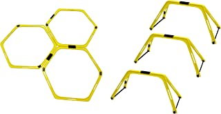 SAKURAI 贸易(SAKURAI)训练 梯子 硬质套装 附便携包 PWF-053