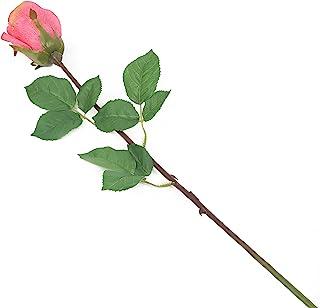 花朵优雅_p1 Dozen 粉红色 12F062PEL