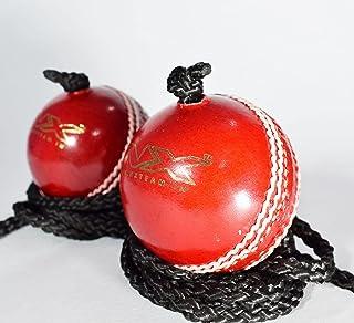 NX 皮革板球练习和打球板球,带绳子 - 2 件装