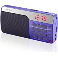 ROYQUEEN朗琴 X500 多功能数字点歌机(紫)