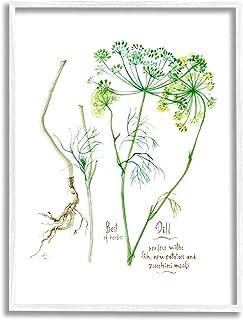Stupell Industries Dill Greens Best of Herbs 花园植物,由 Verbrugge 水彩白色框架墙艺术,16 x 20