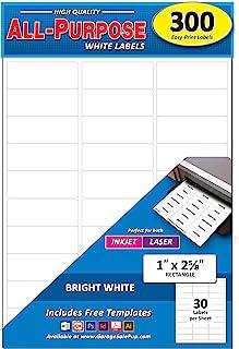 300 件装,1 x 2-5/8 英寸(约 2.5 x 6.7 厘米),亮白色邮寄地址标签,适用于激光和喷墨打印机,矩形,2.5 x 6.7 厘米。