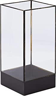 House Doctor Pm0382 陈列柜,植物,黑色复古,大号,宽:21 厘米,高:45 厘米
