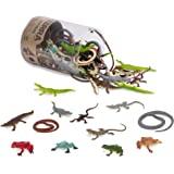 Battat Terra - 爬行动物管装 - 各种爬行动物玩具,适合 3 岁以上儿童(60 件)