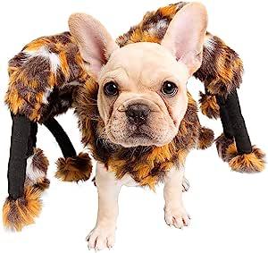 蜘蛛狗服装 - 猫服装 - Pet Krewe 宠物服装