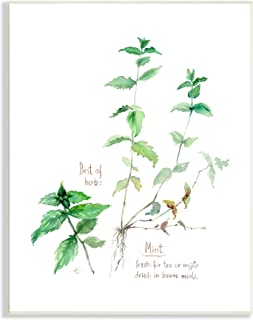Stupell Industries Mint Sprigs Best of Herbs 花园植物,由 Verbrugge 水彩墙饰设计,10 x 15,*
