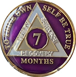 Ranger Industries 7 个月 AA *章金属紫色三板粗纺芯片