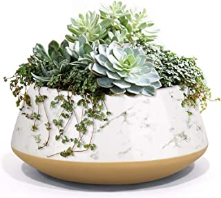 LA JOLIE MUSE 大号多肉植物花盆,陶瓷室内室外花园盆,带排水,适用于植物花,8 英寸(约 20.3 厘米),喷墨和沙滩米黄色