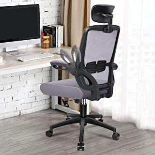 Engber 人体工程学办公椅家庭 - 电脑桌椅腰支撑,网眼高背任务椅,带旋转臂和高度可调节设计