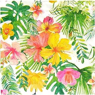 Celebrate It出品的热带花卉鸡尾酒饮料纸餐巾纸,24 克拉。