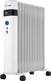 Bastilipo 2499 Bastilipo-R-Bastilipo-EcoFluid-11液体,100%环保,WiFi和2000瓦功率