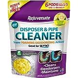 Rejuvenate RJ6DPC-LEMON 柠檬香味垃圾处理器和管道清洁剂,紫色标签,6 件装