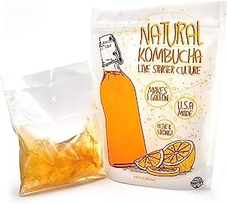 Kombucha 液体起动器 - 来自种植您的食品柜的活起动文化
