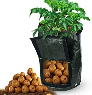DAMEING 4 包 10 加仑(约 30.4 升)土豆生长袋,花园种植袋,带手柄和访问盖,适用于胡萝卜土豆洋葱蔬菜