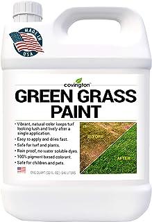 Covington 草坪草坪草坪油漆 草坪油漆 草坪喷漆 - 完美色彩修复 适用于狗狗尿点或棕色补丁 - 草坪绿草喷漆 - 浓缩 - (32 液) 盎司)
