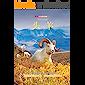 头羊(影像青少版)【荣获多项儿童文学大奖的小学生课外书必读儿童文学,堪比沈石溪动物小说系列的中国野生动物文学!文学与摄影…