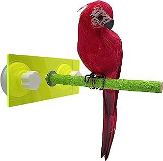 kcrygogo 观鸟栖息地带双强力吸盘,适用于窗户/浴室/墙壁鹦鹉淋浴防滑支架玩具
