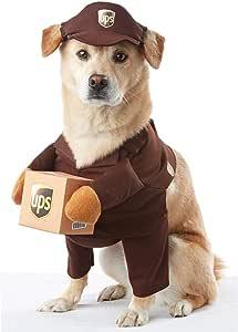 加州服装 UPS PAL 宠物万圣节服装 棕色 大