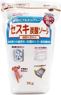 SEKI 碳酸钠 1kg 1個 1