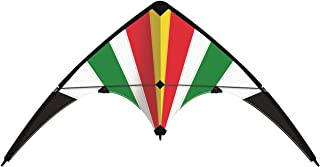 Paul Günther 1082 – 运动风龙Lucky Loop,约 100 x 56 厘米