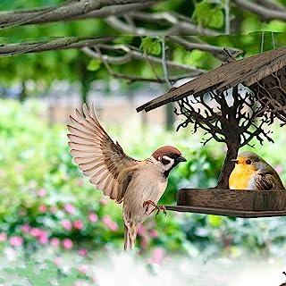 木制鸟屋花园,鸟类喂食花园,礼品悬挂,户外鸟屋带绳子,窗户,庭院,门房花园礼品