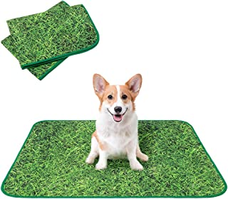 KOOLTAIL 可清洗狗狗*垫 2 件装 - 防滑可重复使用*垫小狗便盆训练垫,防水吸水打水垫,仿真草坪设计