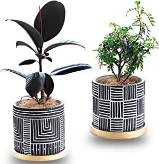 花盆,4.7 英寸(约 11.9 厘米)赤土花盆,带排水孔和托盘,小花盆,适用于多肉质仙人掌容器室内室外,2 件装 - 不含植物