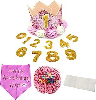 PET SHOW 皇冠狗生日帽子宠物可重复使用生日派对猫咪小猫头带帽子带 1-9 个人偶饰*配件 粉色套装