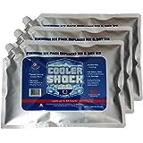 Cooler 抗震3 X LG zero ° F Cooler FREEZE packs 25.4 x 35.6 cm…