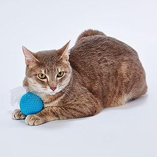 ADD. MATE Happiness Cat 其他 蓝色 猫