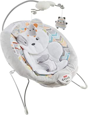 Fisher-Price Sweet Snugapuppy Dreams 豪华摇椅