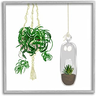 Stupell Industries 现代室内盆栽*蜘蛛植物玻璃容器,由 Jen Bucheli 灰色带框墙艺术,17 x 17,*