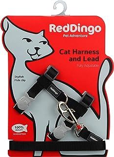Red DINGO 经典猫咪保护带和铅组合