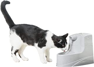 PetSafe Drinkwell 猫和小狗的迷你宠物喷泉引水器–过滤水–包括过滤器,PWW00-14402