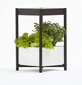 Miracle-Gro 12 个室内生长系统,带LED生长灯的侧桌,适合全年园艺,种植叶绿,草本和花卉