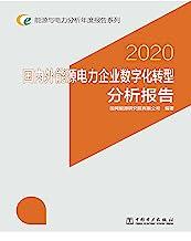 能源与电力分析年度报告系列 2020 国内外能源电力企业数字化转型分析报告