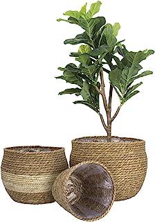LA JOLIE MUSE 天然海草花盆套装,花盆盖,室内花盆,13.5 英寸(约 34.3 厘米)每包 3 个