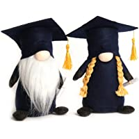 ITOMTE 手工瑞典小矮人,斯堪的纳维亚毕业Tomte,Yule Santa Nisse,北欧毕业生雕像,家居装饰装饰…