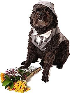 Midlee Dog 燕尾服婚礼套装 - 灰色顶帽和皮带(小号)