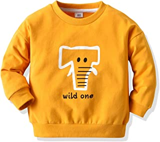 幼儿婴儿女孩男孩字母印花毛衣长袖套头运动衫上衣秋冬户外服装(橙色野生,2-3 岁)