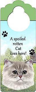 """波斯猫木标志""""A Spoiled Rotten 波斯猫生活在这里""""带艺术照片,尺寸为 25.4 x 10.16 厘米,可以悬挂在门把手上或家里任何地方"""