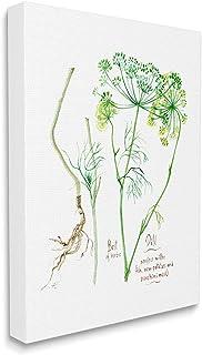 Stupell Industries Dill Greens Best of Herbs 花园植物,由 Verbrugge 水彩帆布墙壁艺术设计,24 x 30