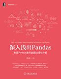 深入浅出Pandas 利用Python进行数据处理与分析(《Python编程:从入门到实践》《零基础学Python》《利…