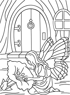 "Darice""精致的野花""浮雕文件夹,透明/白色,10.8 x 14.8 厘米 透明/白色 4.25 x 5.75-Inch 30008395"