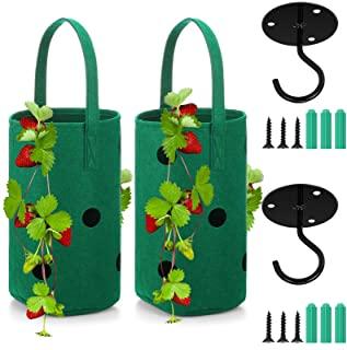 4 件悬挂草莓花盆袋草莓番茄生长袋植物生长衣架袋植物容器带 4 件黑色天花板挂钩,适用于草莓裸根植物和悬挂植物
