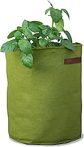 Tierra Garden 50-VIG12 Haxnicks Vigoroot 番茄/土豆种植器