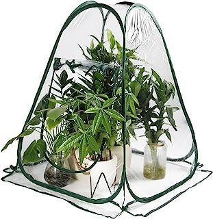 迷你透明温室 PVC 可折叠盖花园露台植物保护弹出式生长温室室外和室内使用
