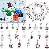 Hicarer Advent Calendar 24 件圣诞节 DIY 挂坠套装圣诞倒数日历手链项链挂坠适用于圣诞节 D…