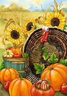 Toland Home Garden Hello Turkey 71.12 x 101.6 cm 装饰感感恩节收获秋南瓜房旗